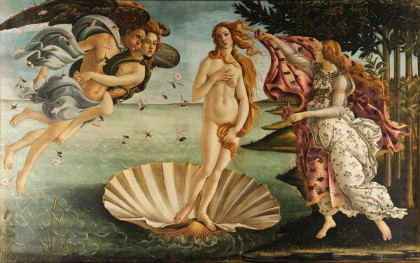 The birth of Venus painting socks